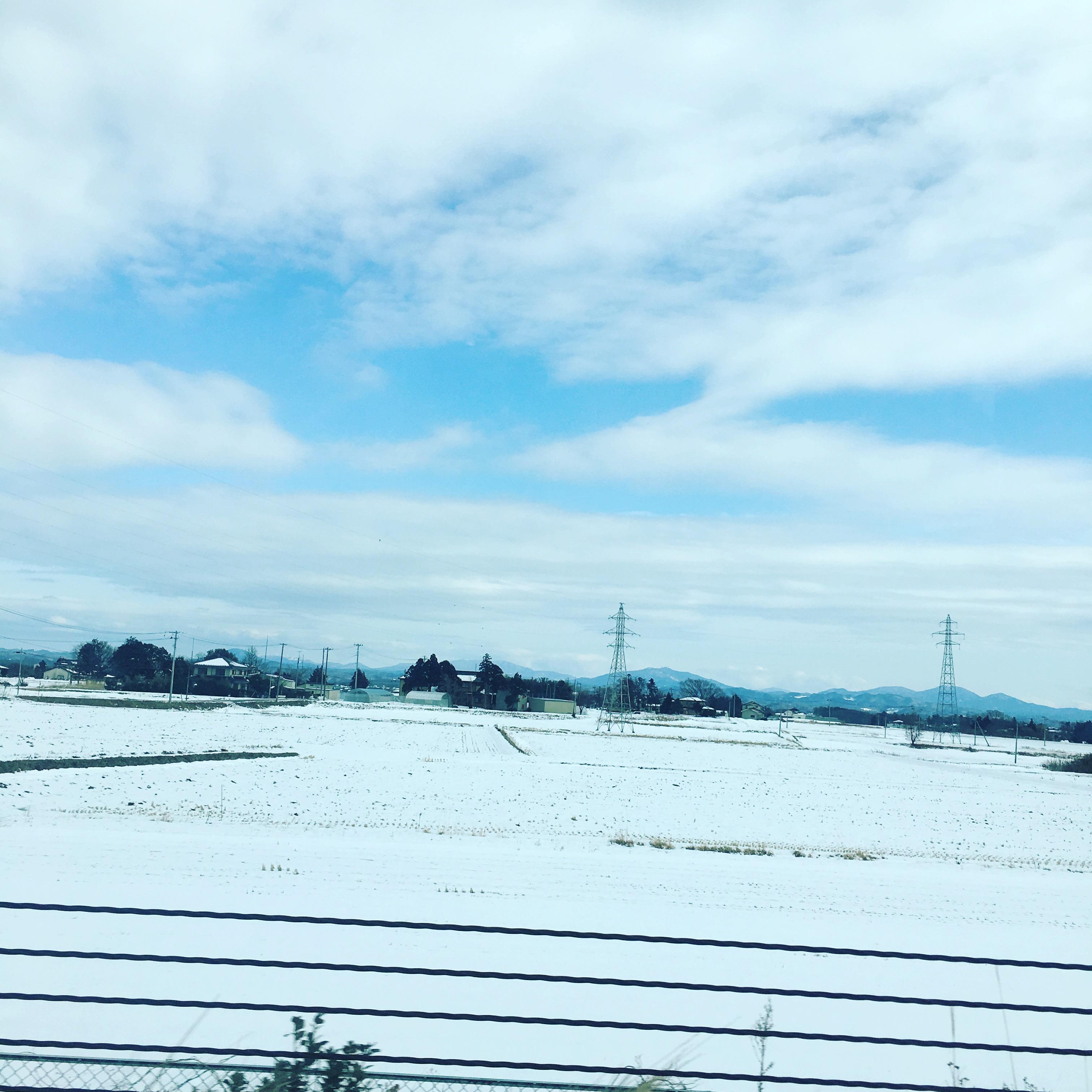 福島行ってきました