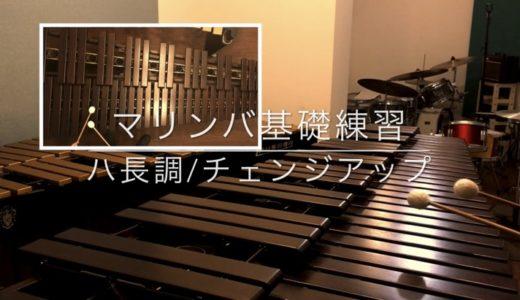 マリンバ初心者の方へ〜マリンバ基礎練習・自宅でトレーニング〜